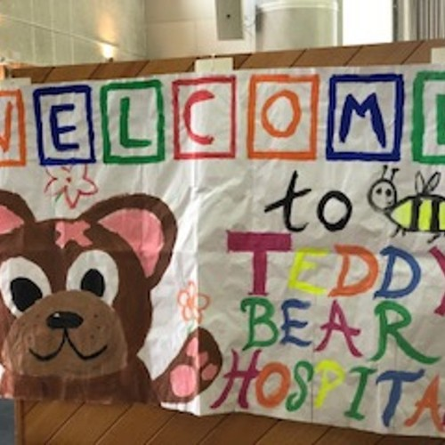 Bon Secours Hospital - The Teddy Bear Hospital Project